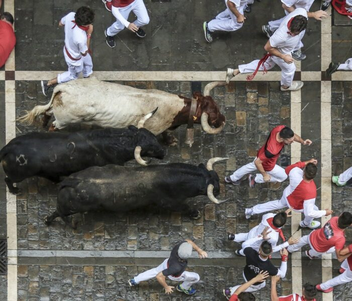 Running With The Bulls? Everything Is Not A Priority